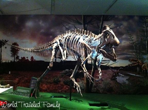 Royal Ontario Museum - cryolophosaurus