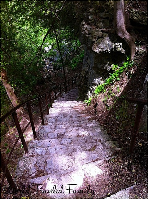 Stairs leading down to Elora Gorge