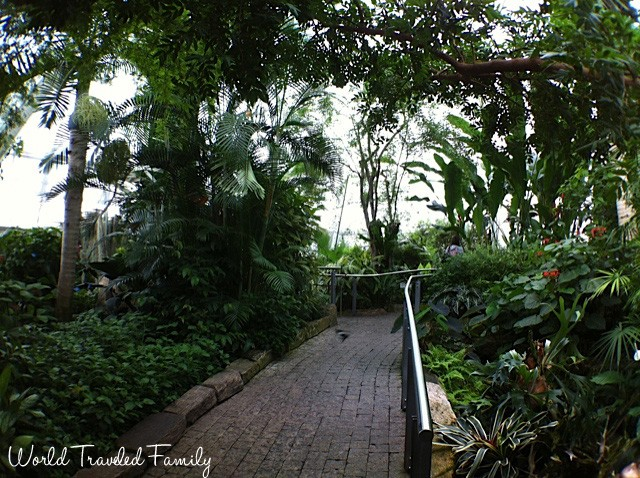 paths headed through Niagara Butterfly Conservatory