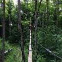 Tree top trekking - Collingwood scenic caves tour