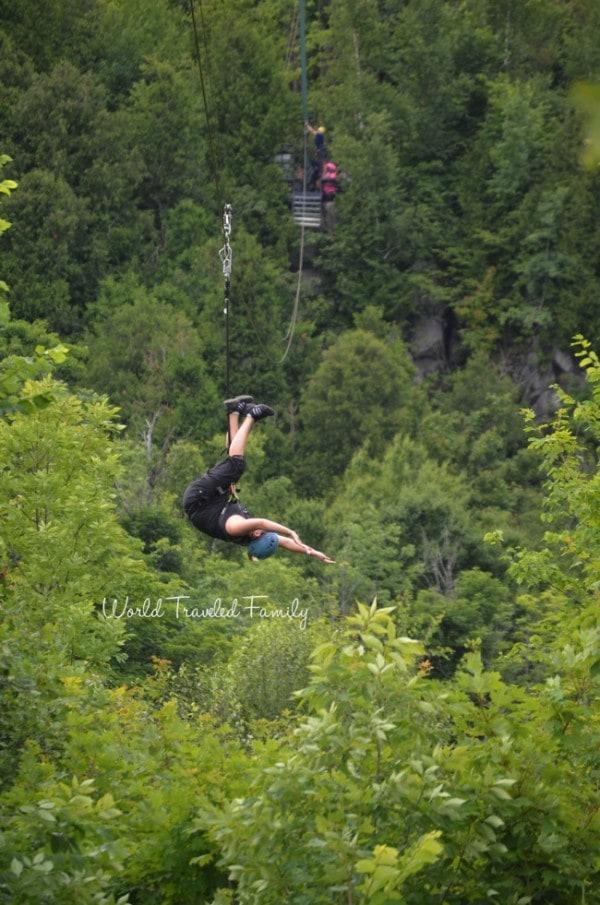 Ziplining - Collingwood scenice caves tour