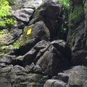 views of the caves - Collingwood scenic caves tour