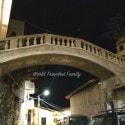 Vallarta Food Tours - Taylor Burton Bridge