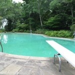 Edsel & Eleanor Ford House - pool