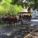 Savannah Georgia - carriage ride Lafayette square