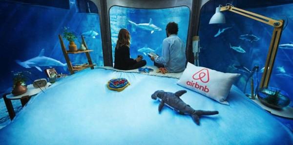 AIRBNB Aquarium shark sleepover