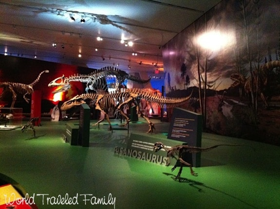 Royal Ontario Museum - Dinosaur Extreme exhibit