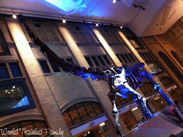 Royal Ontario Museum- Dinosaur inside the entrance