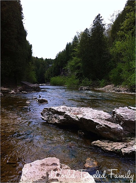 Views of the Elora Gorge
