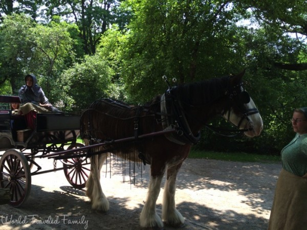 Black Creek Pioneer Village - horse drawn carriage