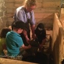 Doon Heritage Village - doing barn chores