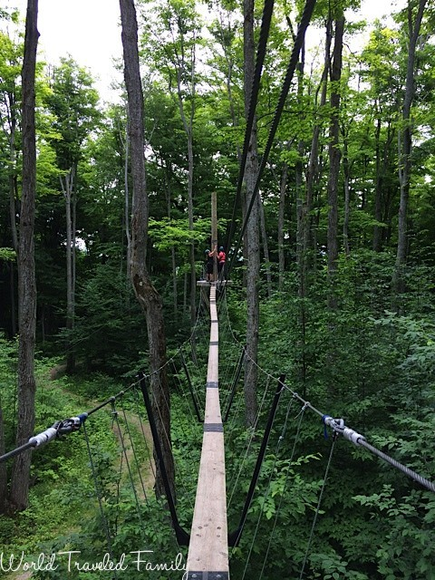Tree top trekking - Collingwood scenic caves tour