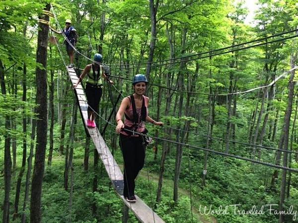 Treetop trekking Collingwood scenic caves tour