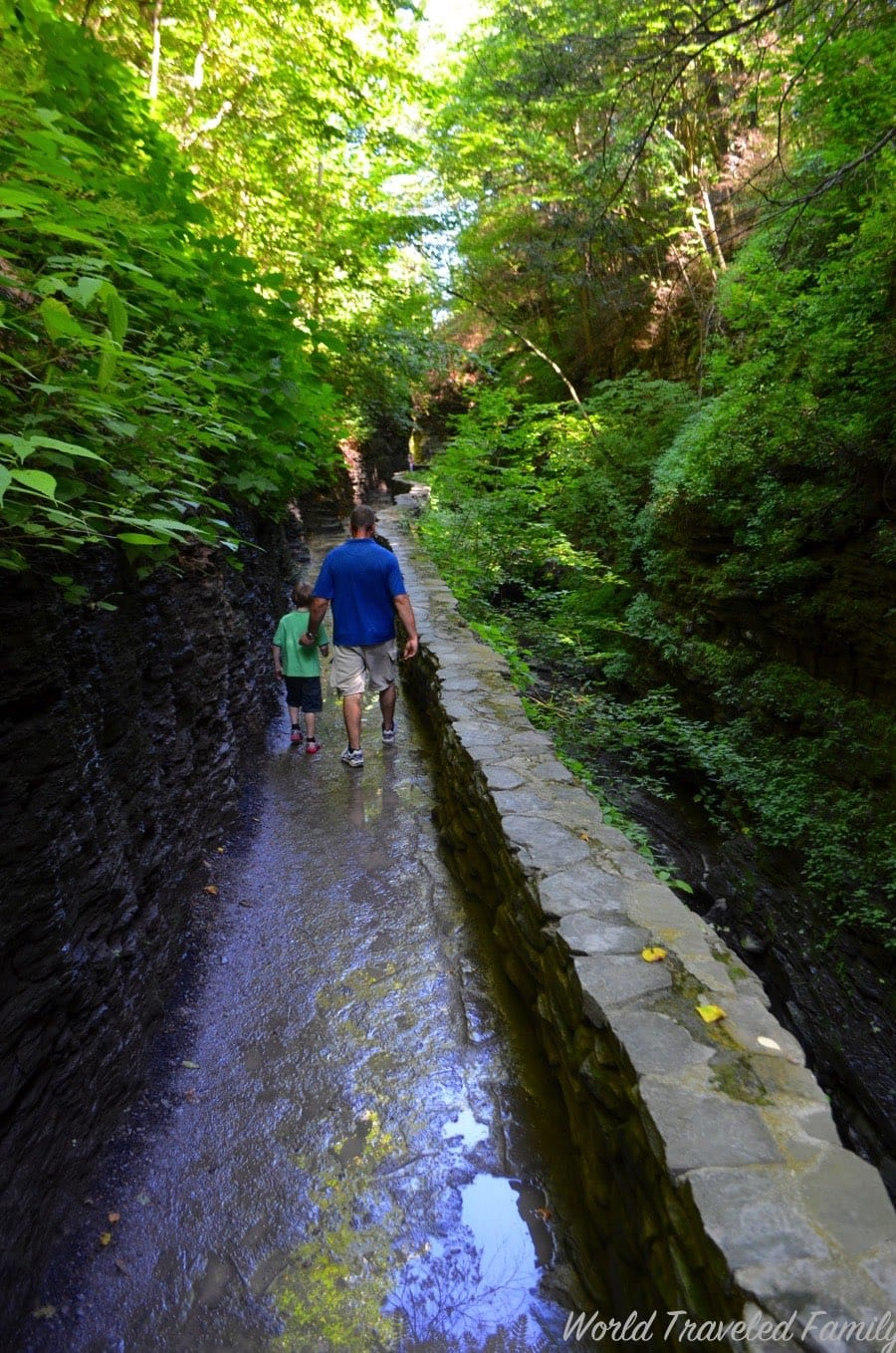 An Incredible Day Navigating Watkins Glen State Park Ny