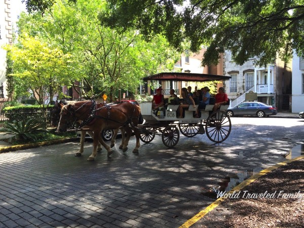 Savannah Georgia - carriage ride Lafayette square