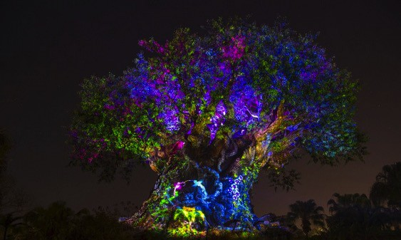 Tree of Life Awakens at Disneys Animal Kingdom at Night