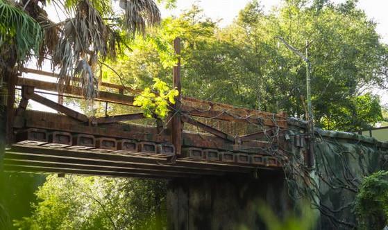 Pandora — The World of Avatar at Disney's Animal Kingdom Summer 2017